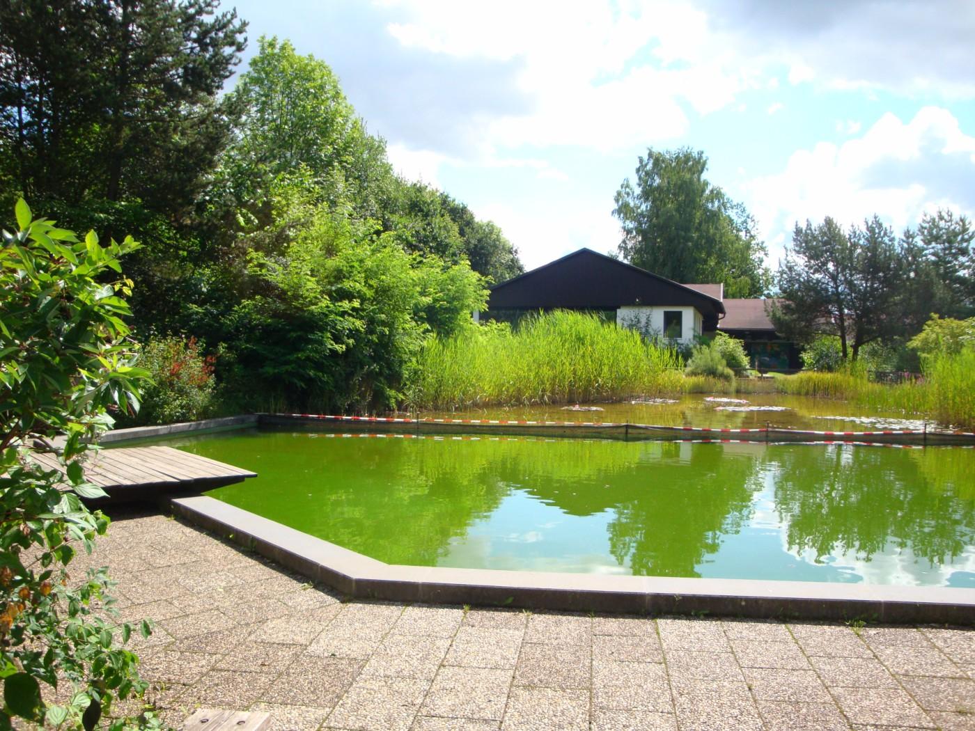 Thomas garten u landschaftsbau - Architekt amberg ...